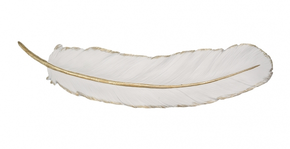 White Feather Wall Art